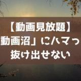 VOD(動画配信サービス)体験談