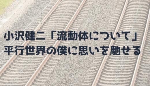 小沢健二「流動体について」と平行世界の僕について【歌詞考察・解釈】